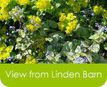 View from Linden Barn